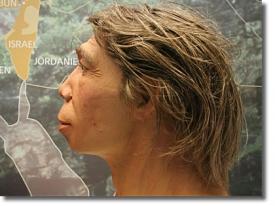 Реконструкция неандертальца. Особенности строения черепа неандертальца