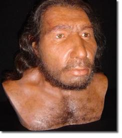 Реконструкция неандертальского мужчины