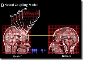 Синхронизация мозга человека в процессе понимания речи