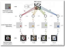 """Схема """"извлечение"""" изображения из мозга человека"""