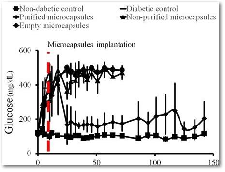 График, доказывающий эффективность новейшего способа лечения сахарного диабета 1 типа без ввода инсулина.