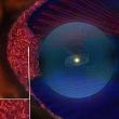 Магнитное поле Солнца окружено магнитной пеной — передают «Вояджеры» с границы Солнечной системы