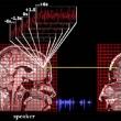 Процесс понимания речи прямо зависит от синхронизации мозгов собеседников в процессе общения
