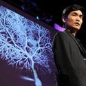 Коннектом — следующий после генома. В США в разгаре мегапроект по расшифровке мозга человека